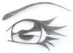 dibujar-anime-ojos301